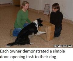 simple door-opening task