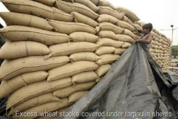 Excess wheat stocks covered under tarpaulin sheets